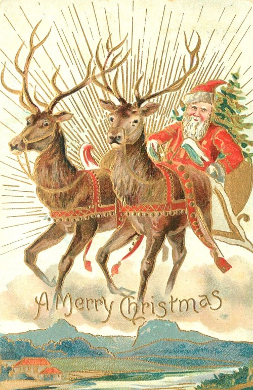 Festive Season xmas card from 1907