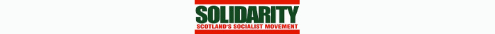 Solidarity logo header